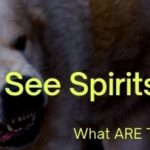 Can Dogs See Spirits or Ghosts?